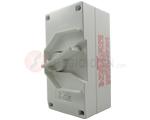 Isolator 2P 63A 250V IP66